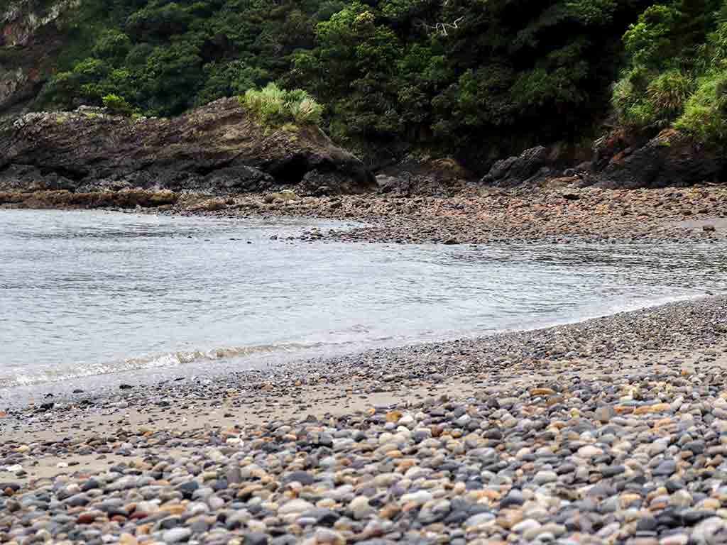 ターバマ(高浜)